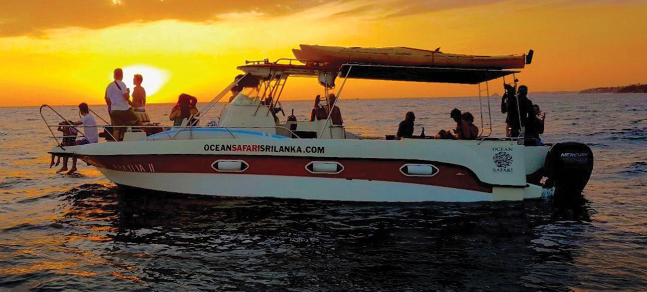 sunset-cruiser